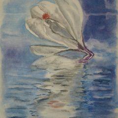 """""""Wasserblüte"""" 20 x 30cm weißes Papier, Pastellkreide"""