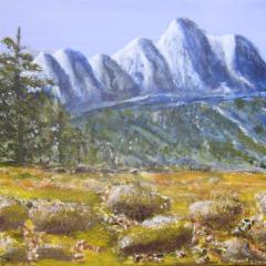 """""""Berge und Steine"""" Acryl auf Leinwand, 40 cm x 60 cm"""